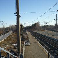 Слабонервным не смотреть: в Екатеринбурге человека убило поездом