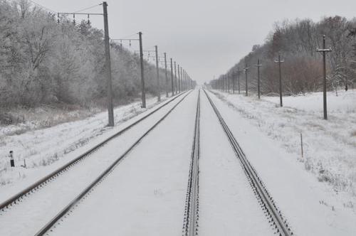 В Оренбургской области поезд сбил мужчину. Личность погибшего устанавливается