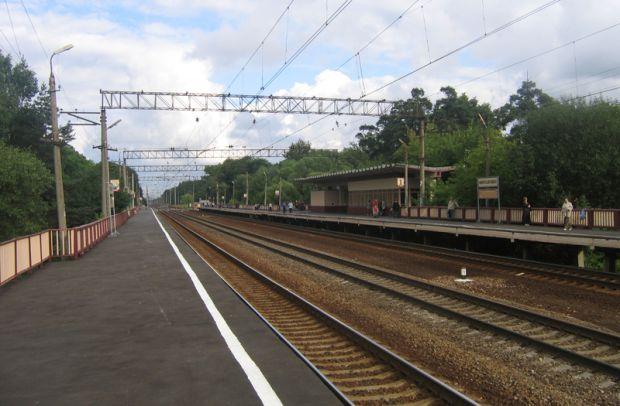 Поезд насмерть сбил девушку у станции Фирсановка в Химках