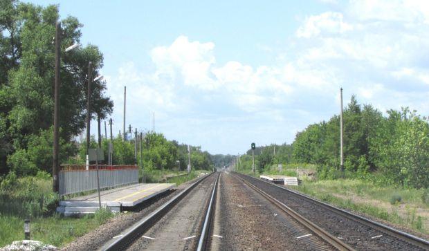В Тамбовской области под пассажирский поезд попал мужчина