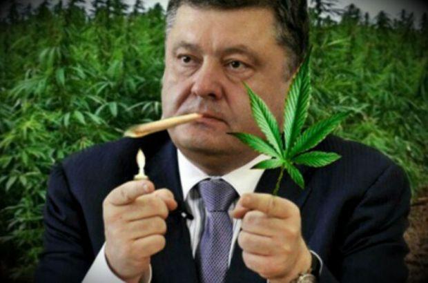 Подать высокое напряжение на рельсы могут на Украине в случае успеха петиции